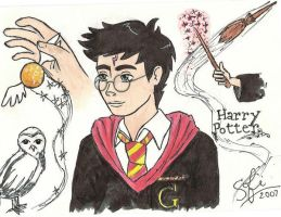 Harry Potter by lemonfox2002