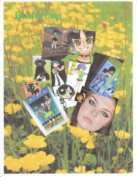Buttercup Collage by LilyBlossom24