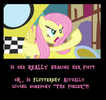 Fluttershy Profanity Motivational by MetroXLR99