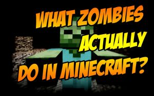 Zombies in Minecraft - TheHypeteen | PrO_RaZe by TheHypeteen