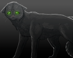 Hollyleaf: What have I done? by Speck--Of--Dust