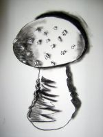 Charcoal Toadstool by MadHatterAndTea
