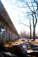 mini great wall by SUNphotography