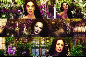 Megan Fox banners by Vintur