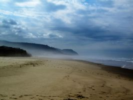 Beach Landscape 1 -- Sept 2009 by pricecw-stock