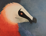 bearded vulture painting by Squeekleen2