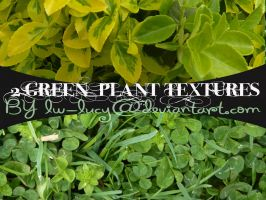 2 Pack Green Leafy Textures by LW-Lucy
