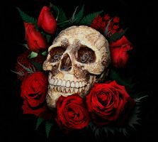 Skull and red roses by SerenityNme