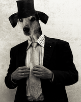 Business Dog by UriahCGFX