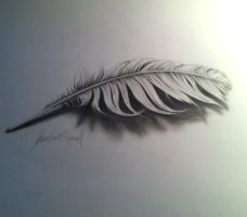3D feather with video of process by XeNzO