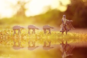The Shepherd by ZahirBatin