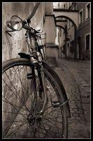 old bicycle 2 by danielVojtech