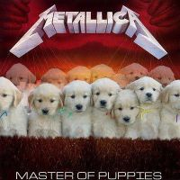 Master Of Puppies by AdhyGriffin