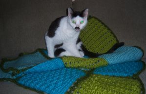 Vella loves the new blanket I made. by CathysCrochet