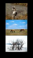 Nature Photography Compilation by Fairy-Walker-April22