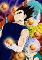 Happy B-Day Vegeta 2009 by Vegigi