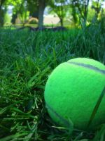 Tennis by weebobeebo