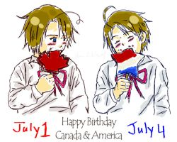 APH - Happy Birthday Can + USA by FrauV8