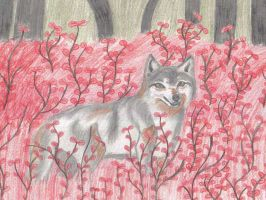 Wolf in the flowers by yellowfox02