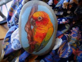 Sun Conure Rock by Feyoka