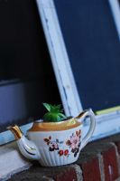 Hen and Tea Cups. by FallMoonlitRose