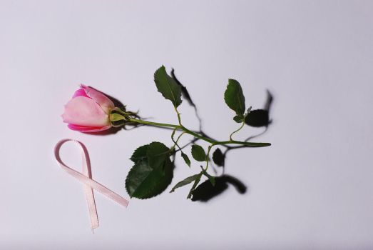 Rose by JoeFoggPhotography