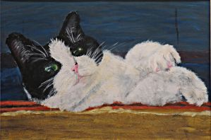 Concentration Piece 8: Barn cat study by knsmith0110