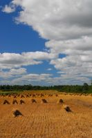 Amish Country... by EricReynolds