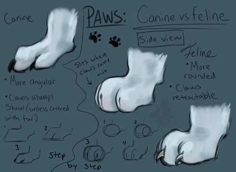 Paws: Canine VS Feline - Side View by animalartist16