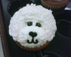 bichon frise cup cake by nlpassions