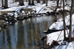 Unfrozen Winter Stream (Stock) by SabrinaFranek