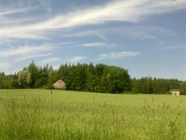Again a Finnish summer picture yee by Pastelli-kiwi