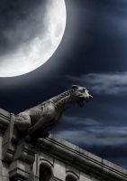 Gargoyle BG 01 by the-night-bird