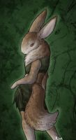 Rabbit Fox by Kium