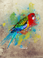 WaterColor Parrot by r0flcopter-dot-com