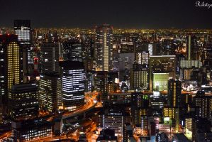 Night over Osaka - to my friend Maria Fischetti by Rikitza