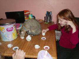Kitteh Tea Time by Caedy