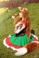 Horo - Spice and wolf( Bawaria dress) by MilenaHime