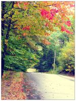autumn walk in Maine by sataikasia