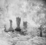 Abney Park by Mohain