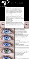 Eye Color Tutorial +Tips by KungfuHamster