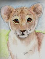 Baby Lion by NatsumeWolf