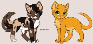 Warrior cats SpottedXFire by Evildraws