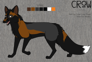 Crow -ref- by KaiserTiger