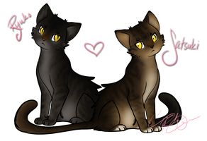 My cats!!! by ailanor