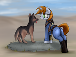 Fallout 4 Equestria (Let's go boy~) by JetWave