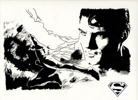 Superman - Christopher Reeve by warholstein