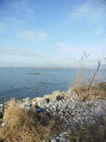Lake of Konstanz by Mr--Zeus