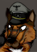 Hans: Headshot Improved by RouxWolf