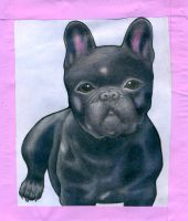 Black Pug by ExtraterestrialMufin